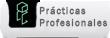 Prácticas profesionales
