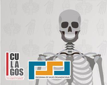 El Programa de Salud Organizacional del CULagos invita a realizar el estudio