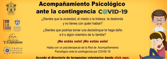 Red de apoyos psicológicos a la comunidad ante la epidemia de COVID-19