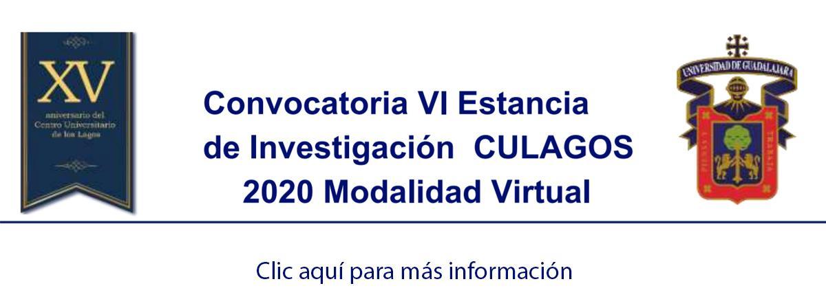VI Estancia de Investigación CULAGOS