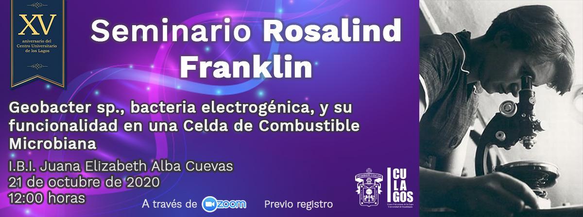 Banner Seminario Rosalind Franklin