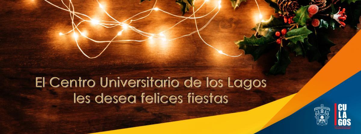 Banner de Felices Fiestas